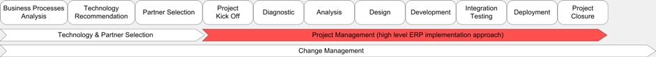 Project Management, Different IT Consulting